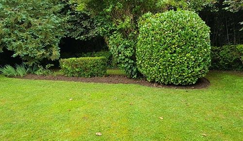 Création de jardin à Saint-Pol-sur-Ternoise, Abbeville